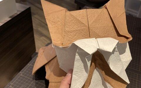 1mの紙でワン折りました