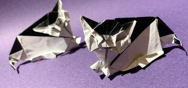 ネコの折り紙創作しました!